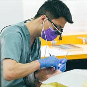 Dentistry - Admissions - University of Saskatchewan